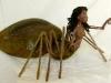 web-spider